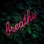 virtual_breathwork_session