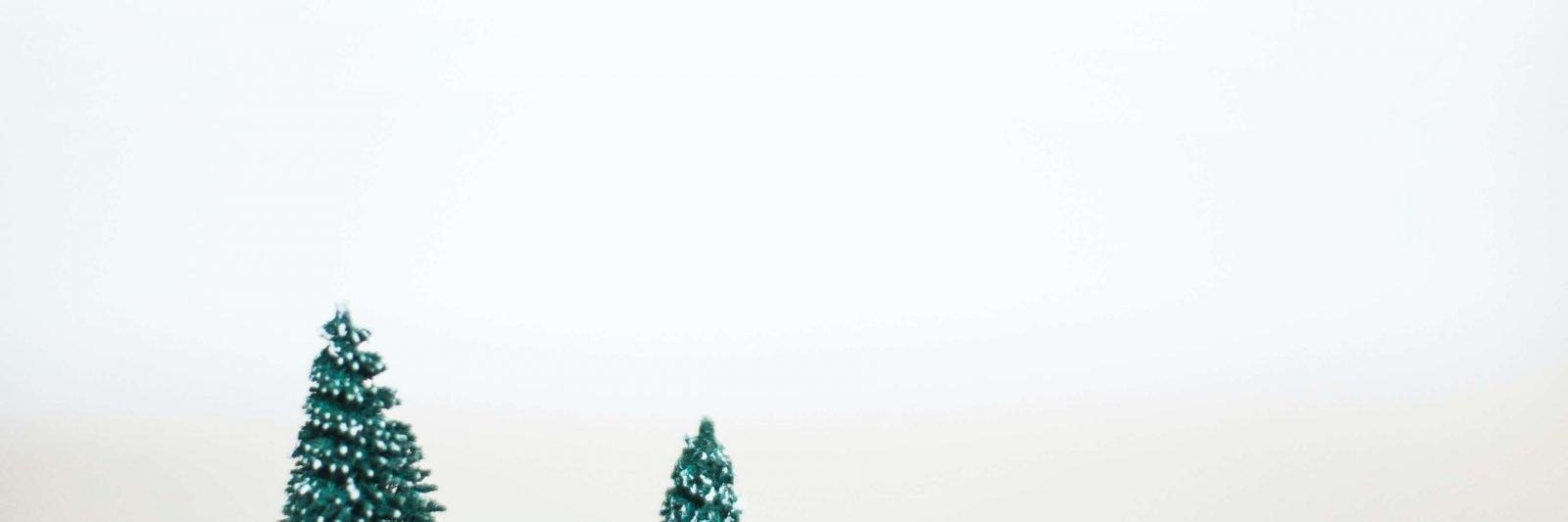 sustainable_christmas_webinar